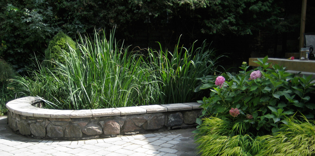 IMG_2736-planting-stone-1100pxw